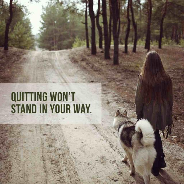 "Photo of a woman walking a dog on a trail with text saying ""quitting won't stand in your way."""